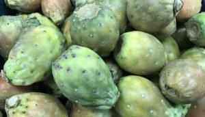 Higo or Tuna (Prickly Pear)