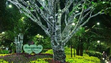 Chiang Rai Flower Festival Feature